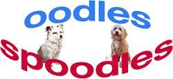 Oodles of Spoodles