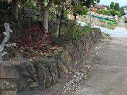 Syamanto Landscaping Construction And Horticulture