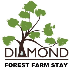Diamond Forest Farm Stay